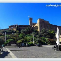 chateau-de-l'empéri-salon-de-provence (6)