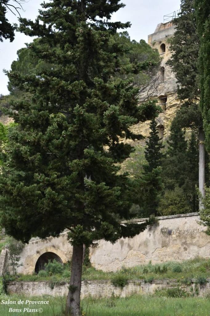 poudrerie Saint-Chamas (37)