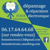 Fenix electronic