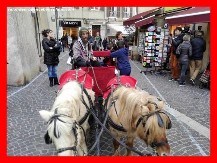Promenade en poney et caleche