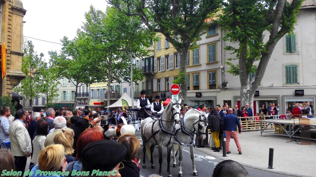 Transhumance salon de provence 30 04 2016 for Bouygues salon de provence