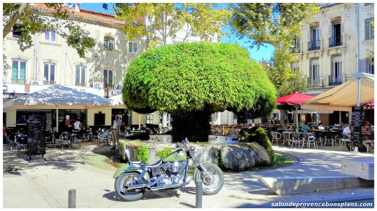 fontaine-moussue-salon-de-provence (3)