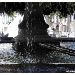 fontaine-moussue-salon-de-provence (5)