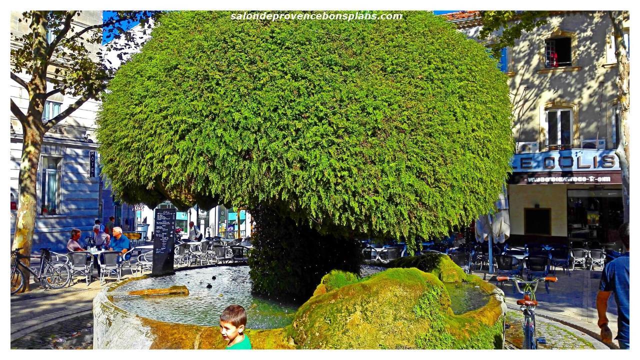 fontaine-moussue-salon-de-provence