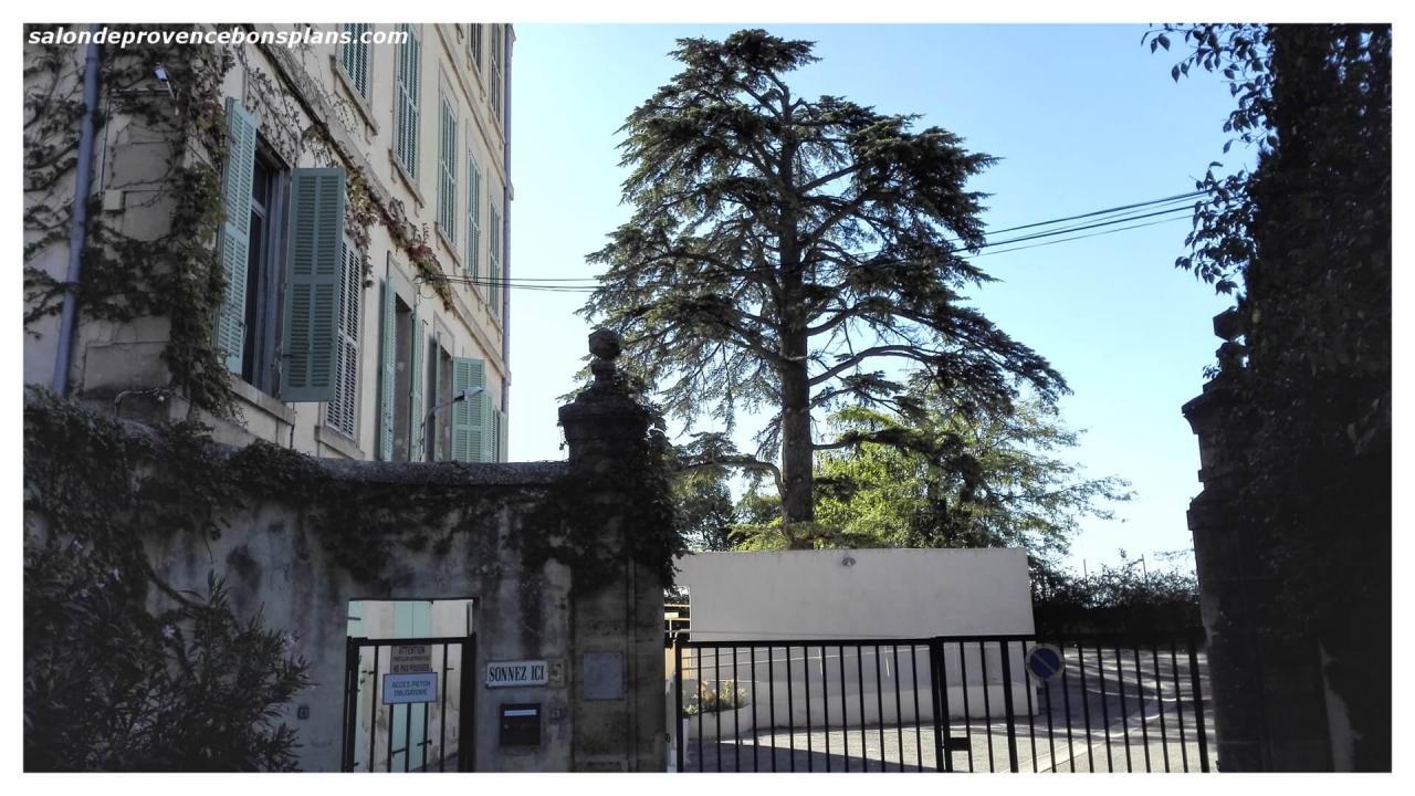 lycée-le-rocher-salon-de-provence