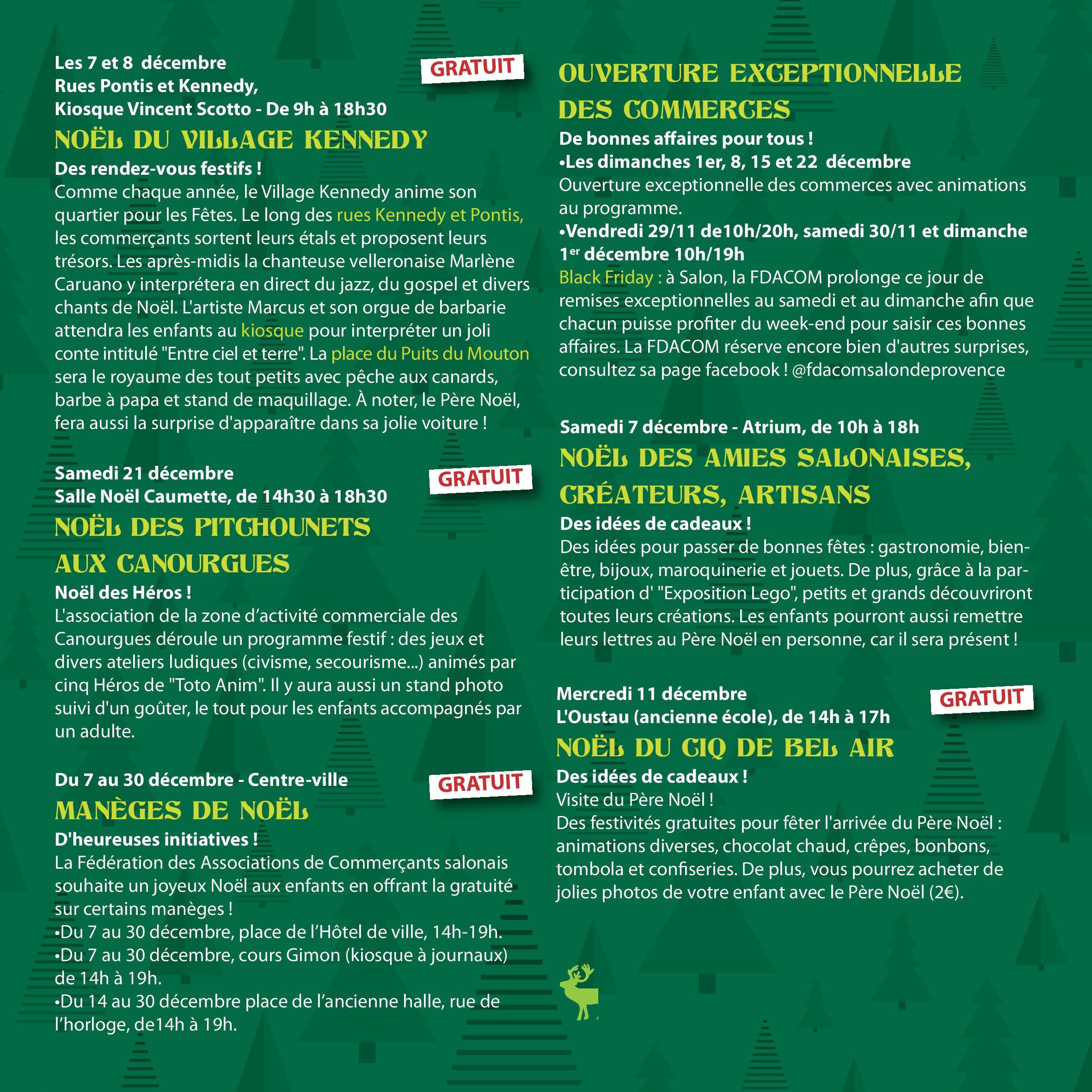 programme noel salon de provence (19)